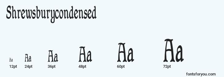 sizes of shrewsburycondensed font, shrewsburycondensed sizes