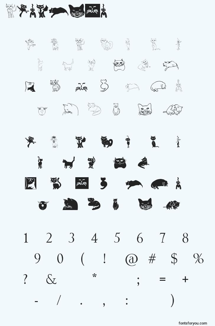 characters of catcrypt font, letter of catcrypt font, alphabet of  catcrypt font