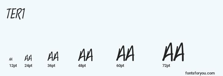 sizes of ter1 font, ter1 sizes