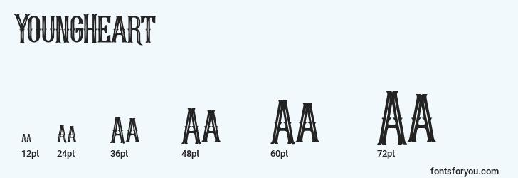 sizes of youngheart font, youngheart sizes