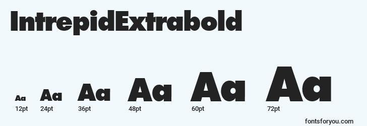 sizes of intrepidextrabold font, intrepidextrabold sizes