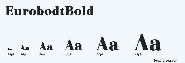 sizes of eurobodtbold font, eurobodtbold sizes