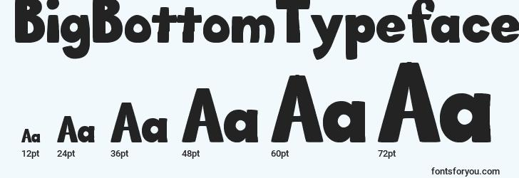 sizes of bigbottomtypefacenormal font, bigbottomtypefacenormal sizes