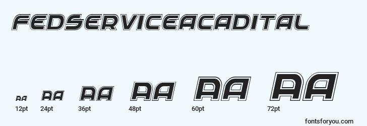 sizes of fedserviceacadital font, fedserviceacadital sizes
