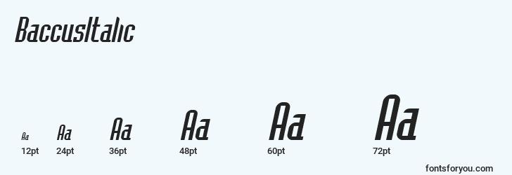 sizes of baccusitalic font, baccusitalic sizes