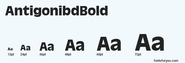 sizes of antigonibdbold font, antigonibdbold sizes