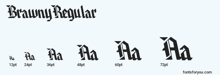sizes of brawnyregular font, brawnyregular sizes